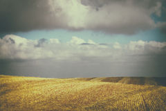 Abstrakt suddig bacground av natursikten med urblekt stilblick goda för typografi Royaltyfri Foto