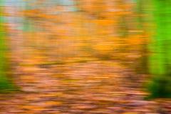 Abstrakt suddig bakgrund för skog Royaltyfria Foton