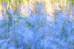 Abstrakt suddig blommaäng med rörelseeffekt som backgroun arkivbilder