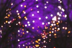 Abstrakt suddig Bokeh Boke bakgrund av Dot Lights Through Branches Fotografering för Bildbyråer