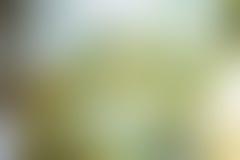Abstrakt suddig gul bakgrund Royaltyfria Foton