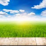 Abstrakt suddig risfält- och trätabell Royaltyfria Bilder