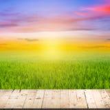 Abstrakt suddig risfält- och trätabell Royaltyfri Bild