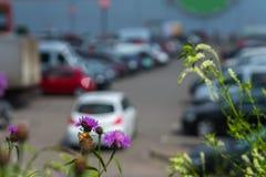 Abstrakt suddig utomhus- parkering, försäljningar sälja i minut, säsongförsäljningar, solig sommardag, för bakgrund Arkivfoto