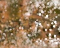 Abstrakt suddighet med bokhebakgrund Royaltyfri Fotografi