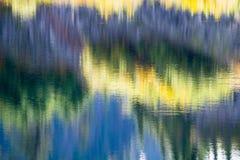 Abstrakt suddighetsreflexionsskog i sjövatten arkivfoto