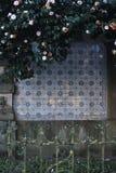 Abstrakt tappningbakgrund i ramen av blommor, blad, fenc Fotografering för Bildbyråer