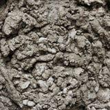 Abstrakt textur av cementmortel Arkivbild