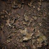 Abstrakt textur av den gamla väggen Arkivfoto