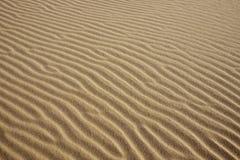 Abstrakt textur av en sanddyn Royaltyfria Bilder