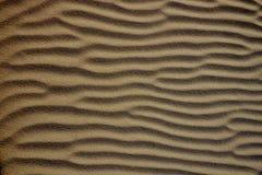 Abstrakt textur av en sanddyn Fotografering för Bildbyråer