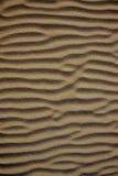 Abstrakt textur av en sanddyn Royaltyfria Foton