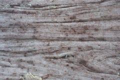 Abstrakt textur av ett ljus - brun wood bakgrund med en wood textur, små rester av papper som limmas till yttersidan Royaltyfria Foton