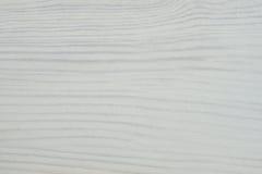 Abstrakt textur av ett vitt träd Royaltyfri Fotografi