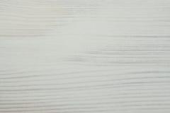 Abstrakt textur av ett vitt träd Royaltyfri Foto