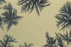 Abstrakt textur av frost och snöflingor Royaltyfri Foto
