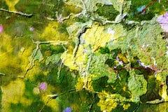 Abstrakt textur av gammal gräsplanbetong Fotografering för Bildbyråer