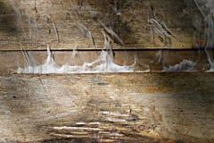 Abstrakt textur av gammalt trä med rök Royaltyfri Foto