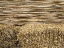 Abstrakt textur av gul bambu- och höbakgrund Royaltyfri Bild