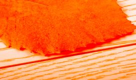 Abstrakt textur av makrosikten av bladtextur Royaltyfri Fotografi