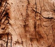 Abstrakt textur av torrt och gammalt trä Royaltyfri Foto