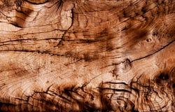 Abstrakt textur av torrt trä Royaltyfri Bild