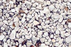 Abstrakt textur av vit-grå färger grus och den krossade stenen Royaltyfri Fotografi