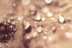 Abstrakt textur för beige Royaltyfria Foton