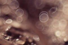 Abstrakt textur för beige Arkivfoto