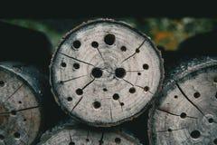 abstrakt textur med hål Royaltyfri Fotografi