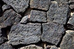 abstrakt textur vaggar av a bröt stenen och laver Royaltyfria Foton