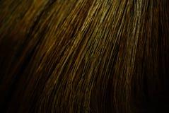 Abstrakt texturbakgrund av kvasten Royaltyfria Bilder