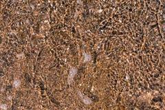 Abstrakt texturbakgrund av vatten och botten Royaltyfria Bilder
