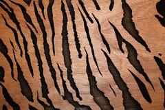 Abstrakt trä texturerar tigermodellen Arkivbilder