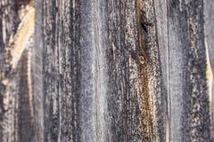 abstrakt träbakgrund med brynt spikar royaltyfri fotografi