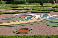 Abstrakt tracery i stamgästträdgård Arkivbild