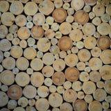 abstrakt tree för bakgrundsmodellstubbe Fotografering för Bildbyråer