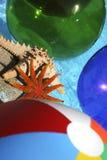 abstrakt tropiskt Royaltyfria Bilder