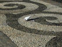 Abstrakt trottoardesign med duvan Royaltyfria Foton