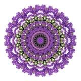Abstrakt ultraviolett bakgrund, tropiska blommor för bougainvillea Royaltyfria Bilder