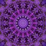 Abstrakt ultraviolett bakgrund, tropiska blommor för bougainvillea Arkivfoton