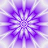 Abstrakt ultraviolett blom- design för solmandalabakgrund Royaltyfria Foton