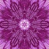 Abstrakt ultraviolett mandalabakgrundsdesign Arkivfoton