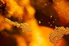 Abstrakt undervattens- sammansättning med bubblor och ljus Royaltyfria Foton