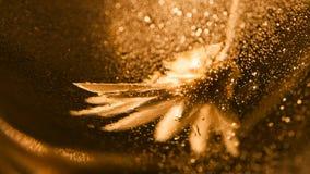 Abstrakt undervattens- sammansättning med den torkat blomman, bubblor och ljus Royaltyfria Bilder