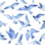 Abstrakt uppsättning för flygfågel med vattenfärgtextur som isoleras på vit bakgrund Royaltyfri Fotografi