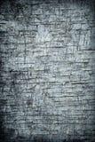 abstrakt vägg för bakgrundsgrungerock Royaltyfria Foton