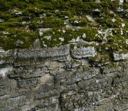 abstrakt vägg för textur för sten för bakgrundsmodellfoto trottoar Arkivfoto