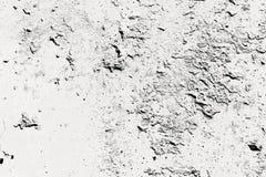 Abstrakt väggbakgrund för monokrom Arkivbilder