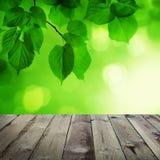 Abstrakt vårbakgrund med den tomma trätabellen Royaltyfria Foton